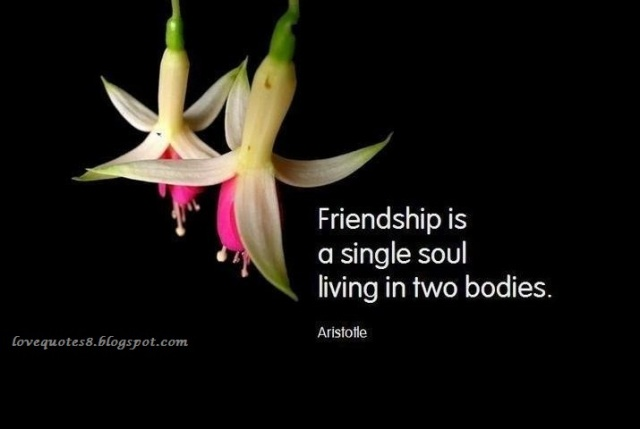 friendship-quotes-wallpapers.jpg