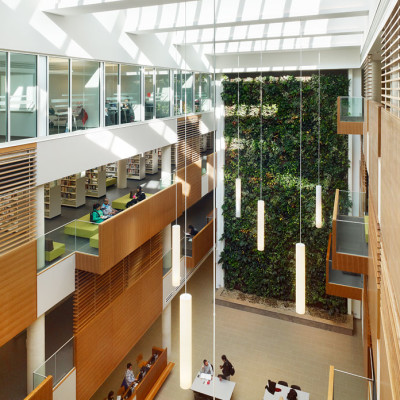 centennial-college-library-green-wall-globe-and-mail-2x-400x400